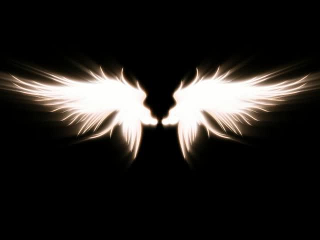 一对天使的翅膀LED视频素材