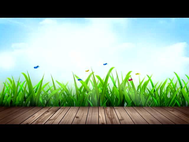 花丛中蝴蝶飞过LED视频素材