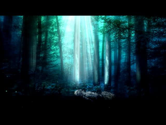 光线照进森林LED视频素材