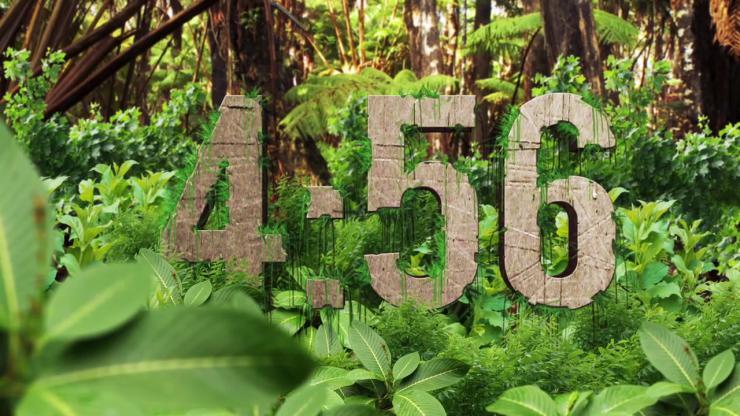 超长五分钟森林倒计时视频素材