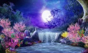 唯美月色湖面蝴蝶LED视频素材