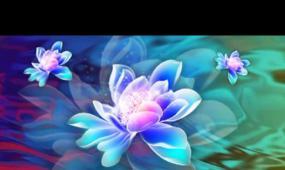 水中莲开花LED晚会背景视频素材