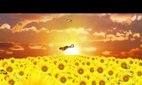唯美葵花LED晚會背景視頻素材