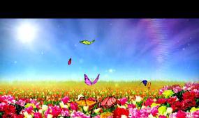 春天蝴蝶LED晚會背景視頻素材