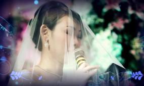 婚礼mv精修版片头 视频模板