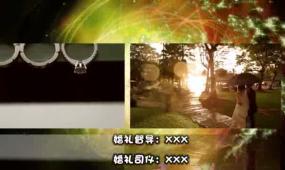 最新婚礼片尾 视频模板