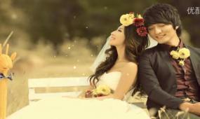 爱的承诺 ED高清婚礼片头 视频模板
