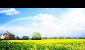 漂亮的彩虹