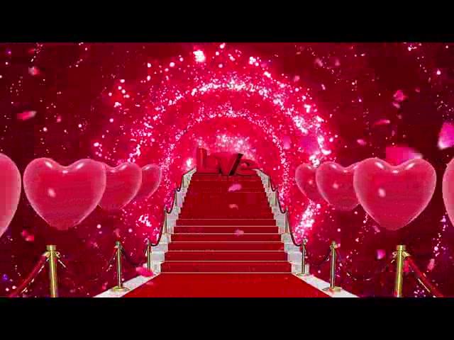 唯美粒子婚礼爱情视频