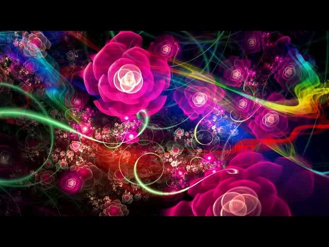 唯美玫瑰花