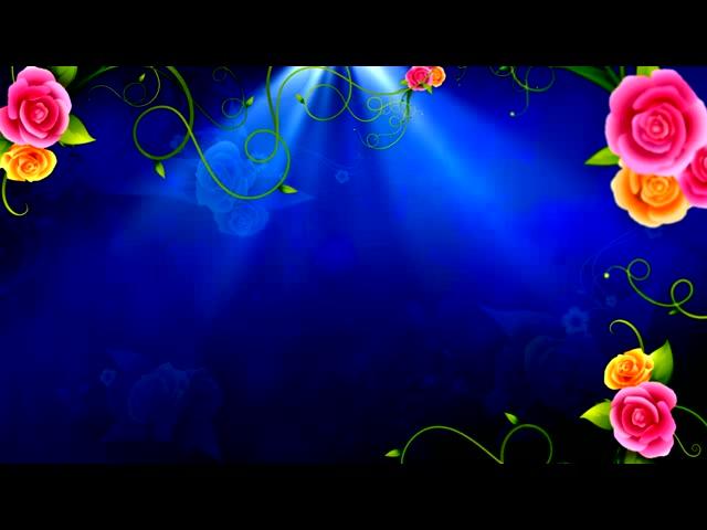 花纹生长 蔓延 花藤  花朵 枝叶 成长 视频背景 婚礼婚庆