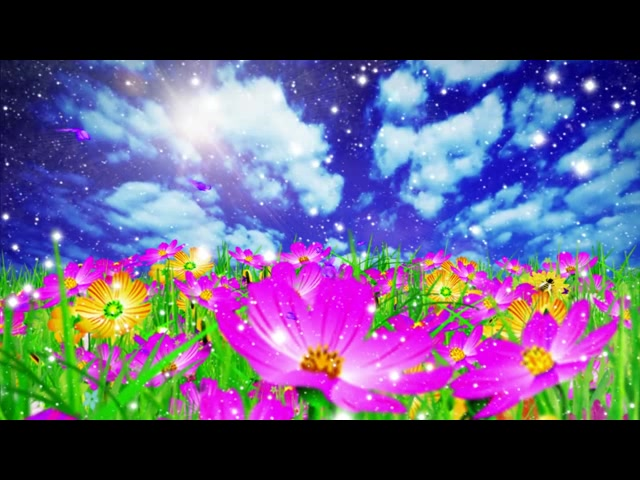 唯美春天花朵
