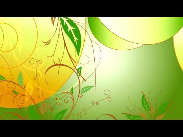 阳光下的花纹