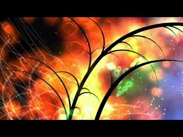 树枝生长动画