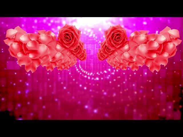 唯美浪漫婚礼背景视频