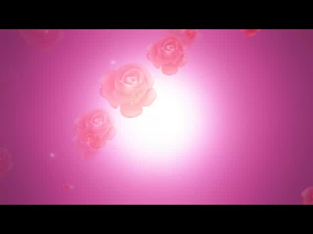 唯美动态玫瑰视频背景
