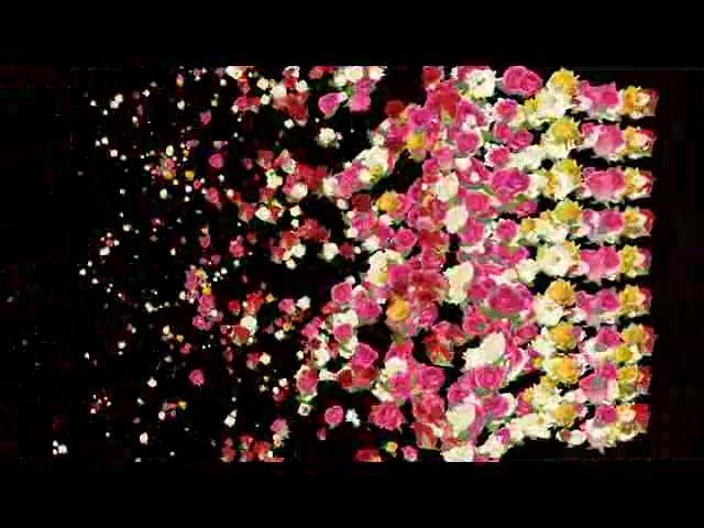 粒子花LED视频素材