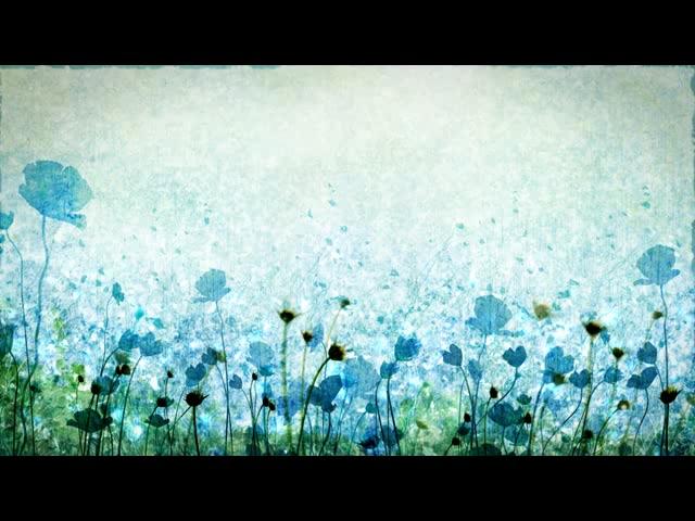 蓝色花朵暗影