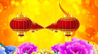 牡丹 灯笼