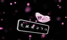 会声会影模版 情人节生日表白蝴蝶片头视频模版