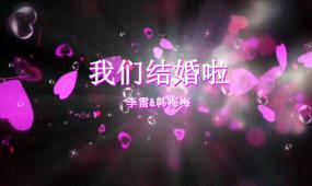 会声会影动感新版枫叶婚礼电子相册视频模板