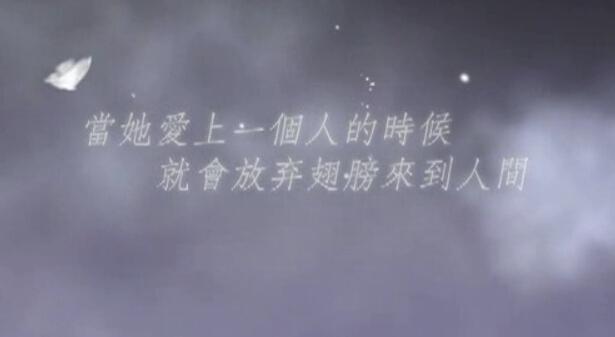 蝴蝶爱情背景LED视频素材