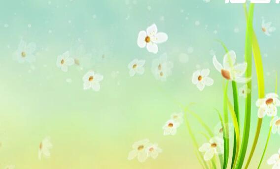 花led背景视频素材