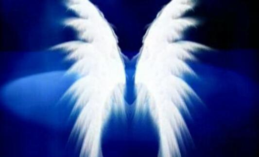 唯美蓝色翅膀视频素材