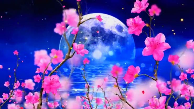 花好月圆桃花林舞台