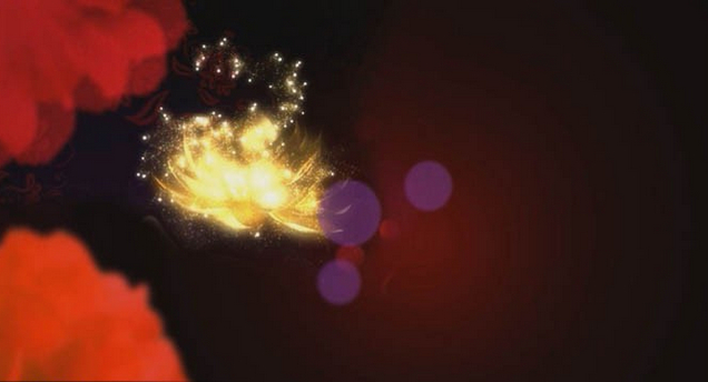 荷花视频素材LED模板   炫彩粒子心会声会影婚礼片头 片尾