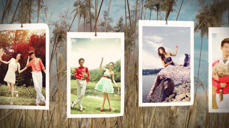 实拍婚庆户外风景大树风光相册展示模板