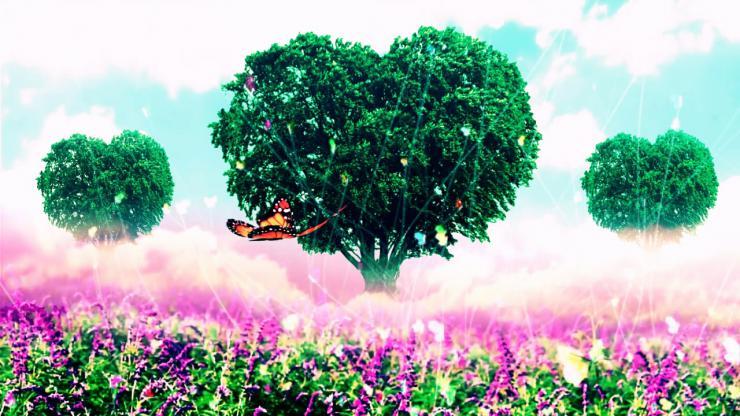 唯美浪漫蝴蝶飞舞