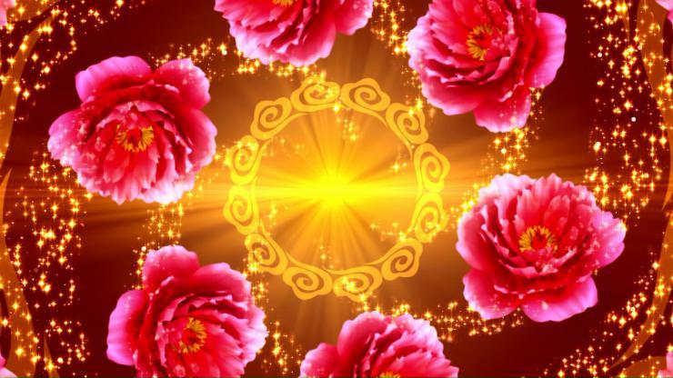 富贵牡丹 新年素材 年会演出 古典舞蹈LED大屏幕素材