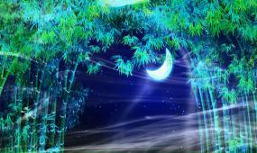 歌曲 舞蹈LED屏背景 月光下的鳳尾竹