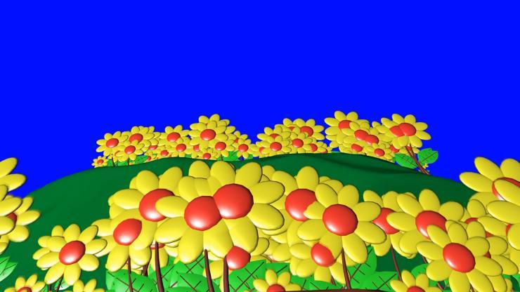 动态花卉视频