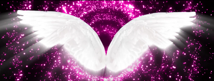 紫色美丽翅膀