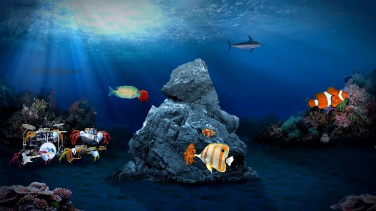 创意海底动物乐队表演