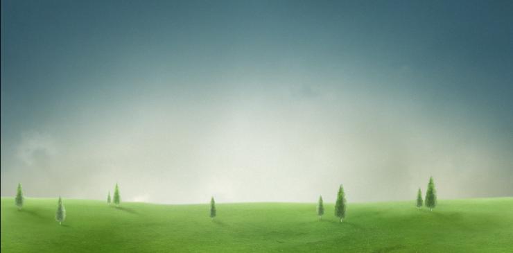 肥沃的田野