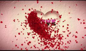 edius7婚庆片头,婚礼开场模板 ,彩色光斑,