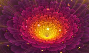 唯美梦幻3D立体花卉视频