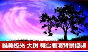 梦幻星空大树极光舞蹈背景视频婚礼背景演出