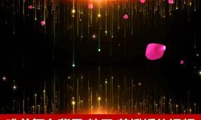 唯美舞台背景视频粒子下落玫瑰花瓣柔美梦幻舞台