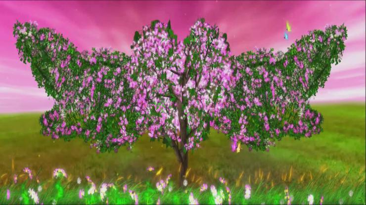 一颗开花的树