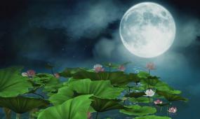望月(伴奏)