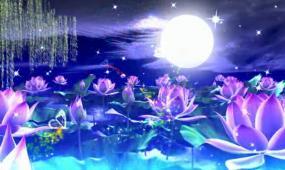 唯美荷塘月色LED晚会背景视频素材