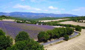 法国自然风光高清实拍视频素材
