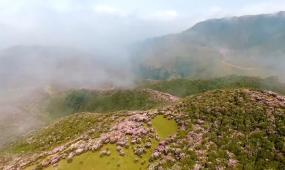 高清实拍贵州乌蒙大草原视频素材
