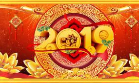 喜庆2019猪年春节晚会舞台背景视频素材