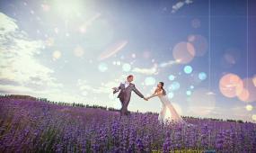 浪漫求婚婚礼片头AE模