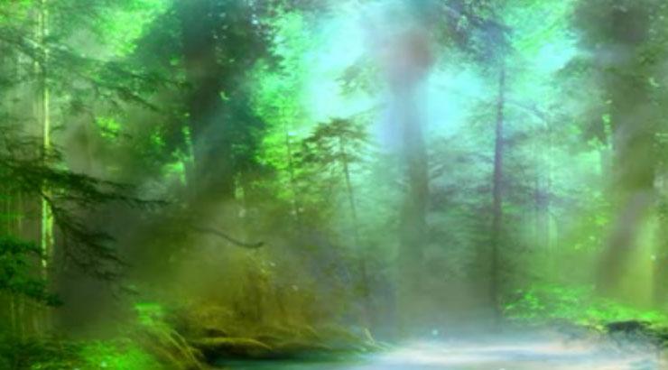 唯美静谧仙境森林led晚会背景视频
